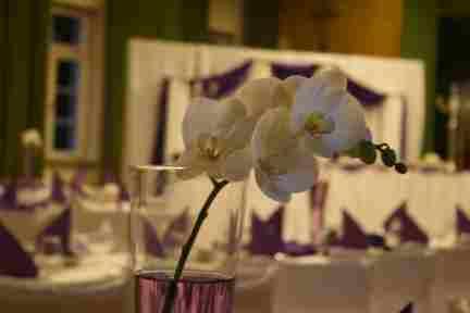 HKT0013 Brautpaar Ecke Florale Dekoration JPG